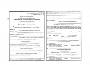 Форма декларации,действующей на территории РФ,Белорусиии,Казахстана